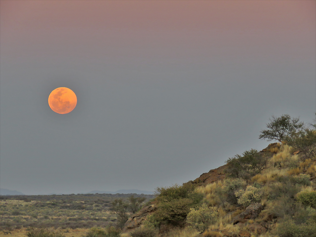 Free Moonrise Moon Images